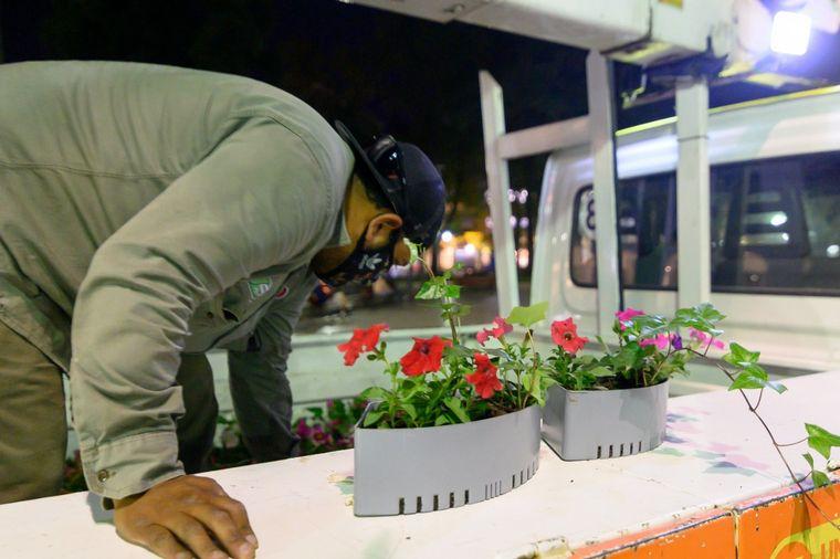 FOTO: Colocan macetas con riego autónomo en la Plaza San Martín
