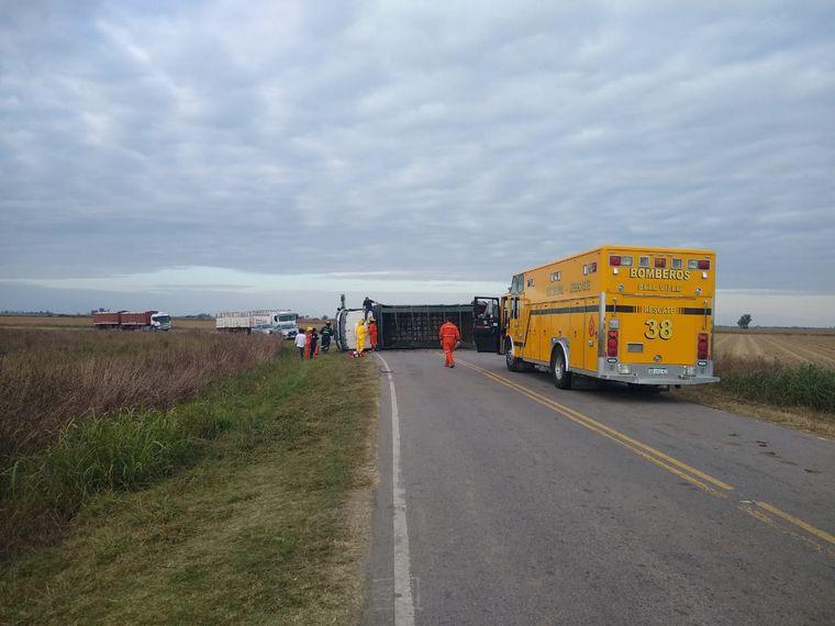 FOTO: Volcó un camión con ganado y faenaron animales vivos