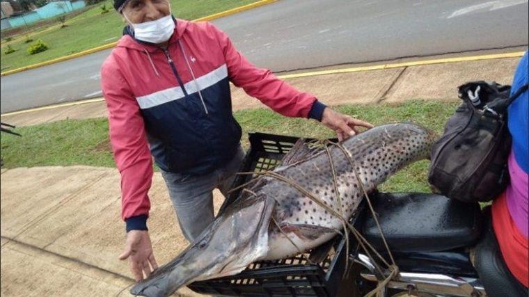 FOTO: Pescó un surubí enorme y lo ató en la moto como acompañante