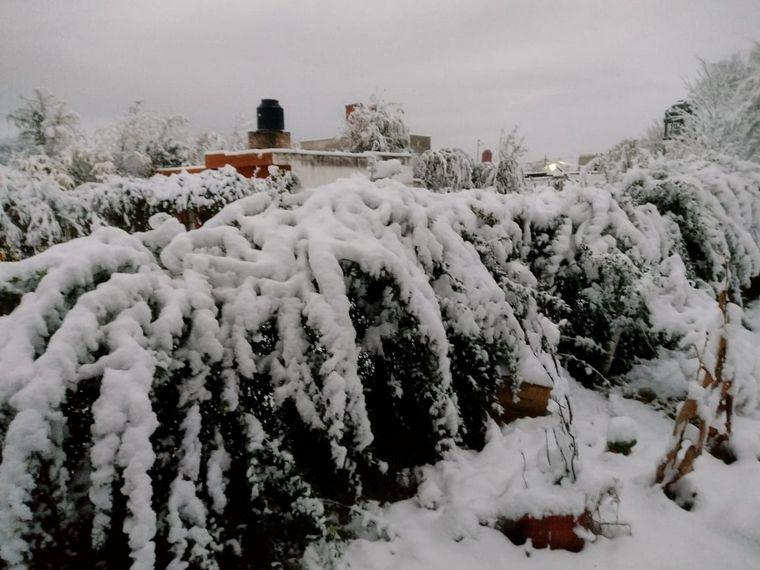 FOTO: Nieve en Mendiolaza.