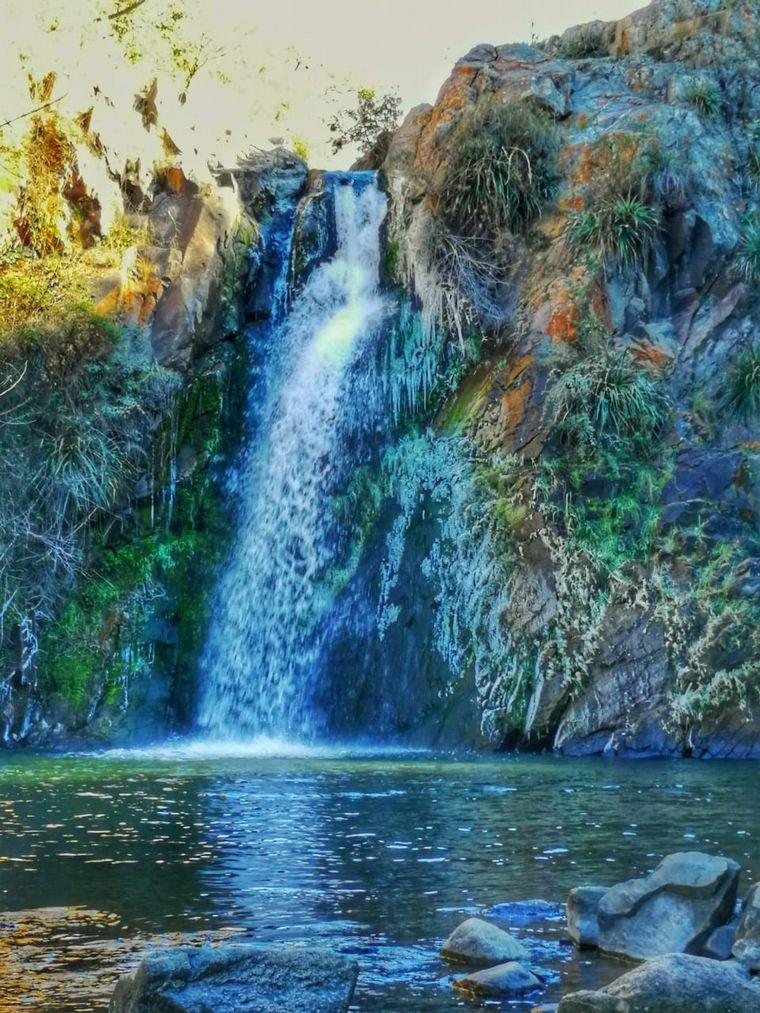 AUDIO: La Romelia, una reserva natural en La Estancita