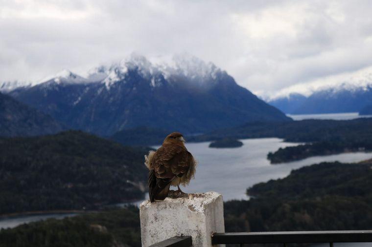 FOTO: La imponente vista panorámica del Cerro Campanario en Bariloche.