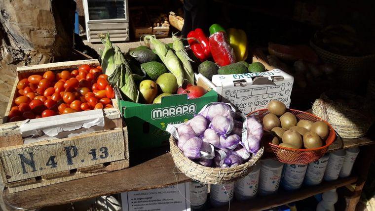 AUDIO: Aloe, la huerta orgánica con almacén natural en Traslasierra