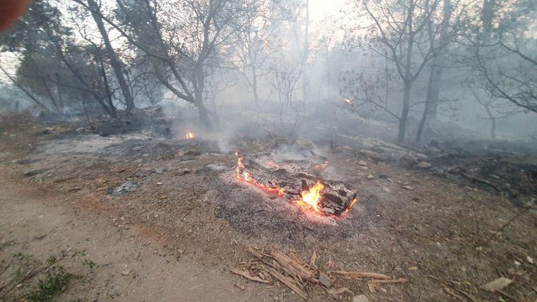 AUDIO: Incendios en Córdoba: esperan que el fuego llegue a San Clemente si cambia el viento