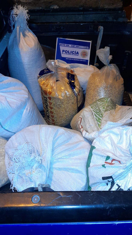 FOTO: Detuvieron a 10 personas por el robo de 5 toneladas de maíz