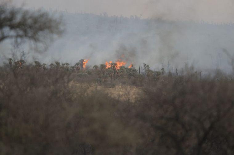 FOTO: Combaten un nuevo incendio en San José de la Dormida.