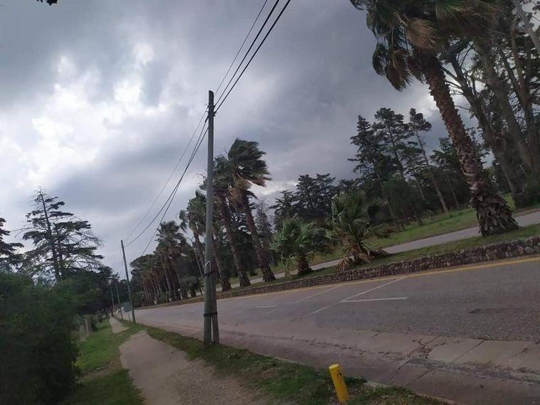 FOTO: Daños en el Valle de Calamuchita por intensos vientos (Foto: Franco Cejas).