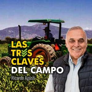 3 Claves de El Campo Hoy